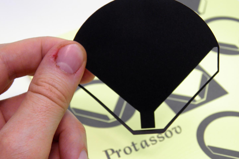 Protassov Music logotype(s)
